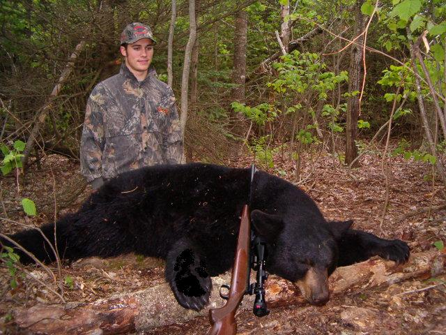 black bear hunting new brunswick
